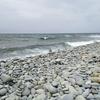 ゴゴゴゴゴ… 石の鳴る浜 カサンドラ
