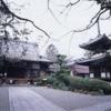 【吉田寺(きちでんじ)放生会】は、鳩や魚を解き放つ厳粛かつ華やかな法要です。(斑鳩町)