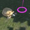 Oculus Goを使って、自然の中でカメと出会ってきた