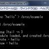 proc経由でkernelとやり取りしてみる