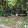 東村ノグチゲラ保護地区に植樹作業