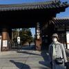2020年 紅葉の京都・奈良 7日間  美しい庭園巡りと美味しい食事を求めて⑥