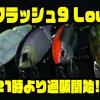 【DRT】入手困難マグナムベイト「クラッシュ9 Low」本日21時より通販開始!