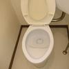 トイレ掃除は、これだけ!水あか。黒ずみ。尿石落とし。