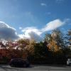 休み:秋めく、ゆっくり、鴨鍋る