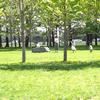 フォトログ:六花亭美術村庭園@中札内村