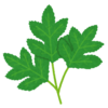 ハーバーボッシュ法 その2 〜植物の窒素利用〜