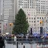 ロックフェラーセンター・クリスマスツリー第86回点灯式直前の様子をニューヨークから速報!!【NYお役立ち情報】