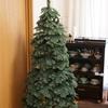 【クリスマスツリーのレビュー】ヨーロピアンブルースプルースツリースリムを買って、設置してみたよ