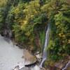 手取川峡谷の紅葉