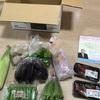 【ふるさと納税】高知県奈半利町・定期便①