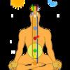 体は2つの相対的なエネルギーで成り立っている<乳がんブログVol.409>