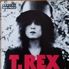 THE SLIDER【T.REX】
