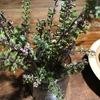 穂紫蘇の佃煮