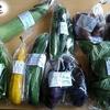 食べチョクで「季節のふもとも野菜セット」をお取り寄せした感想【静岡県】