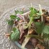 牛さんのアジア風サラダ 多分