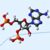 RDkitを用いた分子の操作(3D構造の最適化)