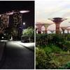 シンガポールの「ガーデン・バイ・ザ・ベイ」を安く観光する!