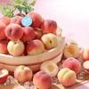 【グルメ】今ならスイーツパラダイスで、桃の食べ放題 & タピオカ飲み放題やってるよ〜!
