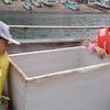 「海から見る水族館?」男鹿水族館GAOの周辺観光スポット~男鹿 遊覧 海底透視船~