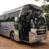 シェムリアップからバンコクのバスはジャイアントイビス(Giant ibis)で快適移動(世界の猫探し26匹目)