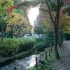 ♫もっとシャンソン...アンリ・サルヴァドール「冬の庭」~Jardin d'hiver~