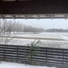 小雪まってます