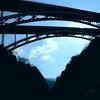 桜樹橋の下まで
