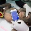 ボルネオ島のオランウータン 1歳半の赤ちゃんまでもが巻き込まれる現状に改善の兆しは見えず