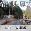【動画】神奈川県厚木市 林道 二の足線