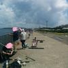 横須賀うみかぜ公園。ルアーでデカサバ!!!🍉 18年7月下旬