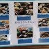 宮崎県庁近く!評判の良い「ふるさと料理杉の子」のチキン南蛮定食はとてもおすすめ!