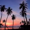 スリランカの同時多発テロ事件のショック。海外在住者として思うところを書いてみます。