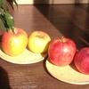 りんご園とヒマヤラ資料館
