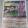 しばたあやめまつり2012開催中@新発田市・五十公野公園
