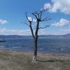 上諏訪  彫刻放浪:上諏訪→岡谷→駒ヶ根→飯田→丸山公園[第1日]