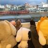 高岡駅前のアパホテルさん!初めての射水神社。富山県、お勧めの食事など?