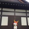 彦根城にひこにゃん登場!!可愛かったです!!