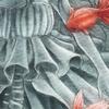 グループ展「花色金魚想」告知
