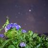 7月のとある夜、精進湖での撮影