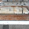 奈良県立馬見丘陵公園探索(3)北今市2号墳石棺