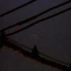 「散開星団M6」の撮影 2020年4月25日(機材:コ・ボーグ36ED、スリムフラットナー1.1×DG、E-PL5、ポラリエ)