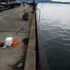 釣場調査 ファミリーフィッシング 秋のレジャーと釣り 吉良サンライズパーク (宮崎港)