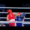 岡澤セオン、入江聖奈、並木月海の闘い。東京オリンピック出場権の行方は?