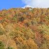 飛騨の秋景色 【カクレハ付近】
