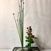 涼を呼ぶ爽やかな生花(水陸生)