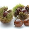 栗の簡単な食べ方は素材の味が活かせる