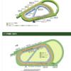阪神2400m。1.2番人気が同時に馬券になるのは確率は33%??