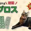 猫の慢性腎不全 新薬「ラプロス」【続報・その2】 Chronic renal failure in cats: RAPROS of new drugs part3