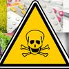 食品や薬の中に入れて、大衆の頭を悪くさせる方法 ―フッ素、重金属(水銀など)、精神薬、キャノーラ油、遺伝子組み換え食品
